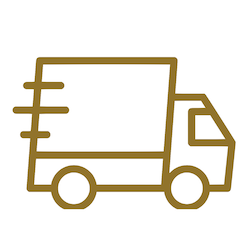 Fast Delivery icon Gold